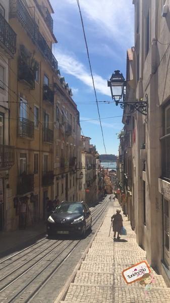 dirigir em Portugal