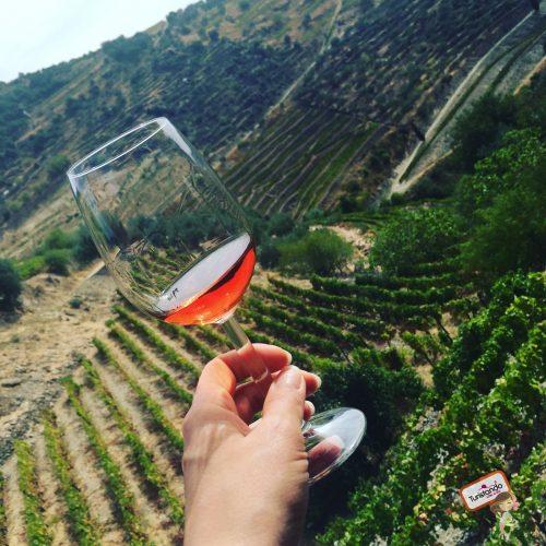 Degustação de vinhos no Vale do Douro