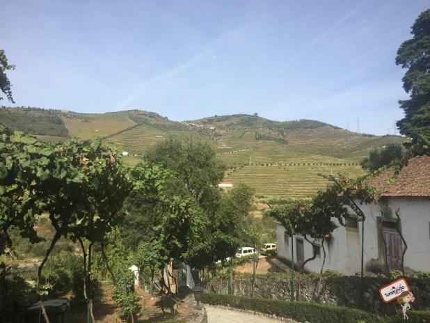 Quinta do Marrocos - Passeio Vale do Douro