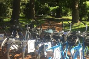 Quer saber como é conhecer Buenos Aires de Bike?