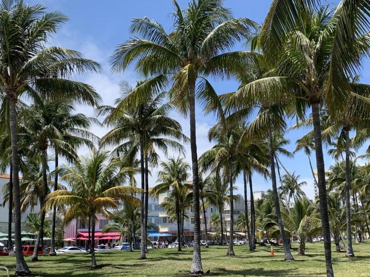 o que fazer em miami south beach