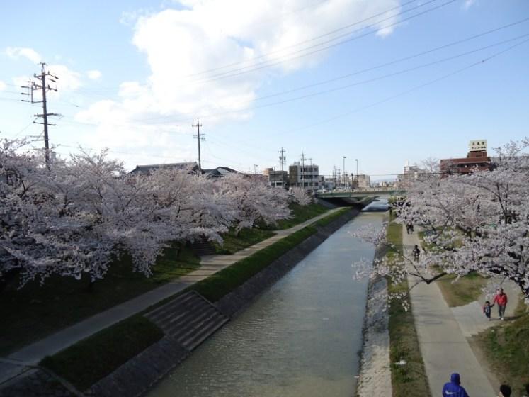 japão em abril