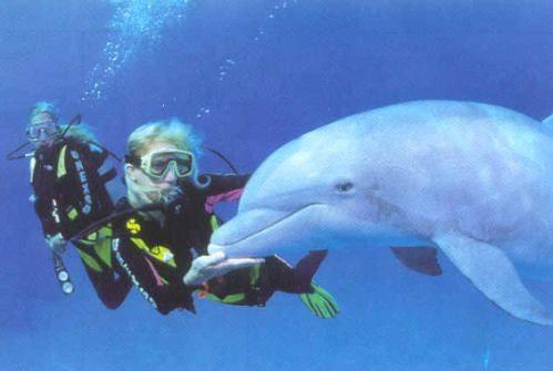 Viajar a un destino para practicar buceo es una forma de turismo deportivo muy frecuente.
