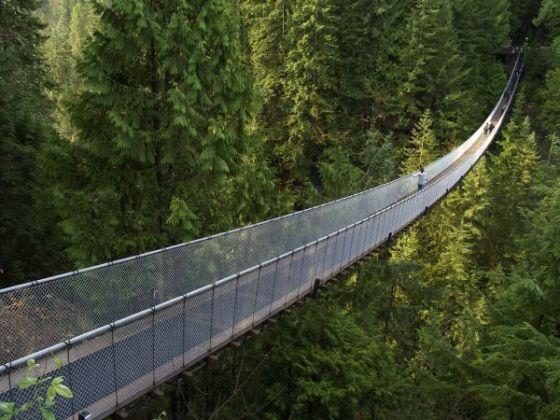 Puente en suspensión Capilano -Canadá