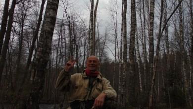 Photo of هرب إلى الغابة من كورونا .. ولقي حتفه بطريقة غريبة
