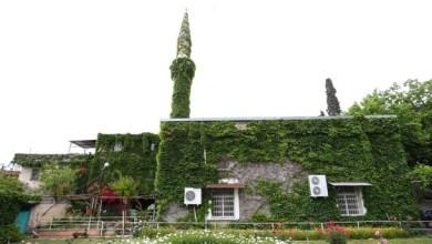 """Photo of """"الربيع"""" يتسلق مئذنة """"المسجد الأخضر"""" في ولاية أضنة التركية"""