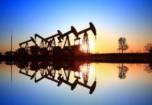 neft hasilatı