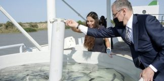 Leyla Əliyeva nərə balıqlarının suya buraxılması mərasimində iştirak edib