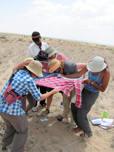 Vaishnavi, MacKenzie, Evelyn, John, Amna and Kat struggle to make shade onto their unit for a photograph