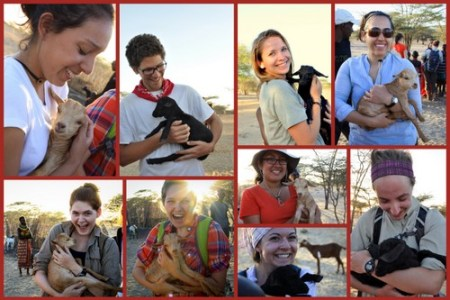 All the cuteness as the students and the TA cuddle the baby goats.