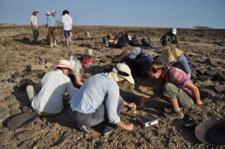 Sarah, Erica, Angela, Kailie, Robyn and Abdi, begin excavating the buried elephant bone.
