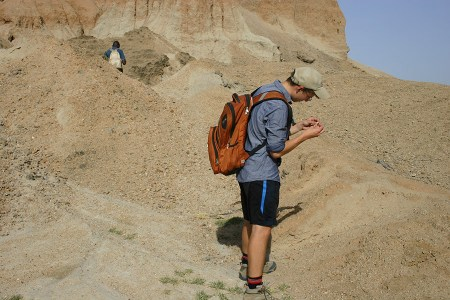 Although we were looking for fossils, Dylan could not pass up the opportunity to look at the different rocks and minerals.
