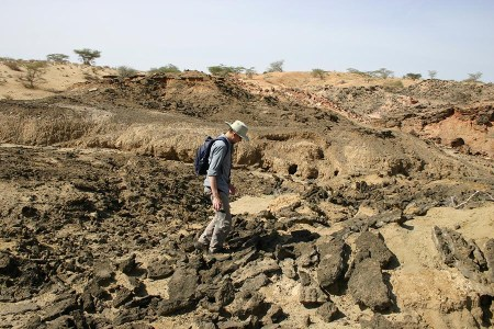 Mike carefully walks across the area in order to not trip and fall but also to not step on any fossils.