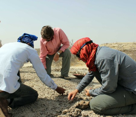 Prof. Fortelius, Niguss and Ryan search the surface for more obvious, larger fossil remains.