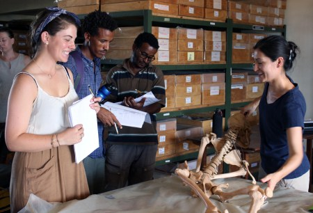Dr. Frances Rivera helps students piece together a replica human skeleton in a human anatomy orientation.