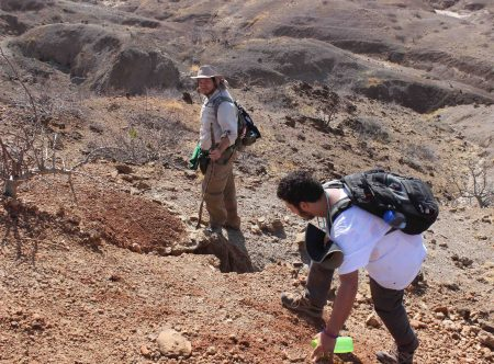 Max and Joe search for fish fossils to confirm that this red sedimentary deposit is in fact the main fish bed.