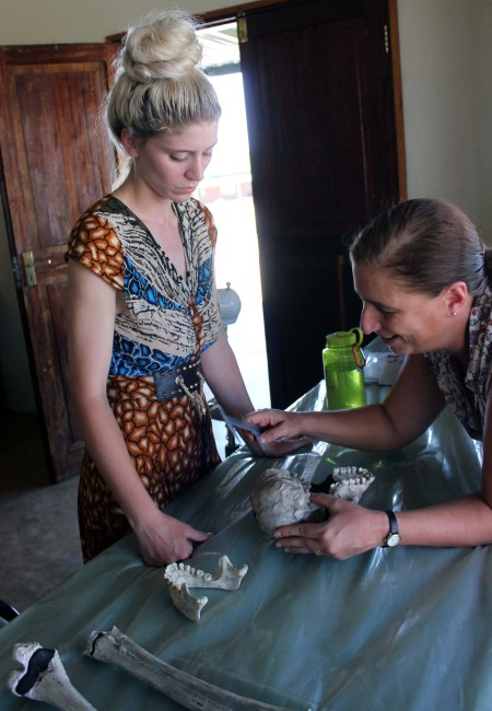 Dr. Mirazon Lahr assists Kait in taking measurements on the casts.