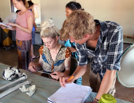 Kait and Rob take down measurements from the casts to make comparisons among the specimens.