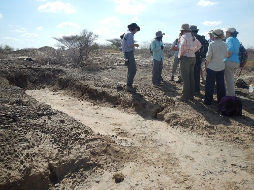 The excavation site where the hominin hunters first found the calcaneus.