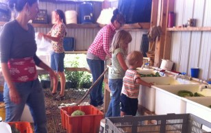 Washing the veggies.
