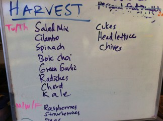 The harvest board