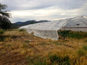 the outer hoophouse