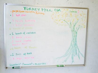 harvest board, week 3