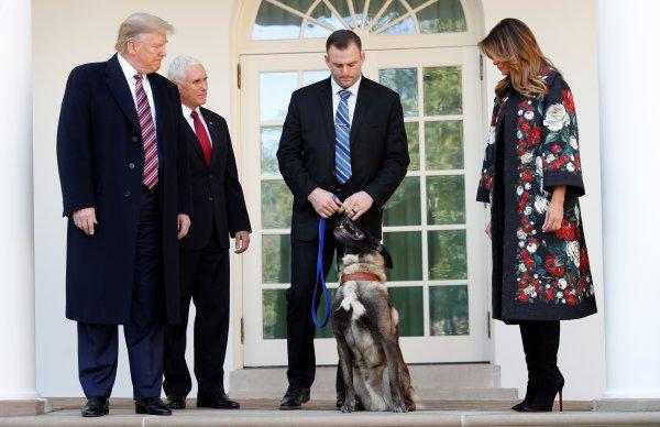 Trump'tan Bağdadi operasyonunda görevli köpeğe madalya