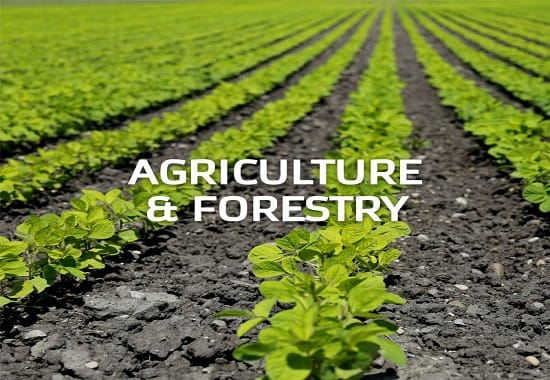 Agriculture, Fishing & Forestry