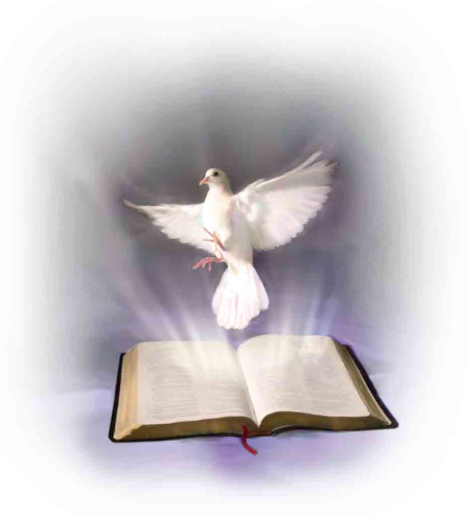Image result for images of the holy spirit