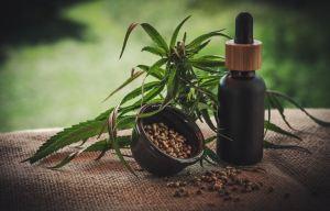 cannabinoids CBD