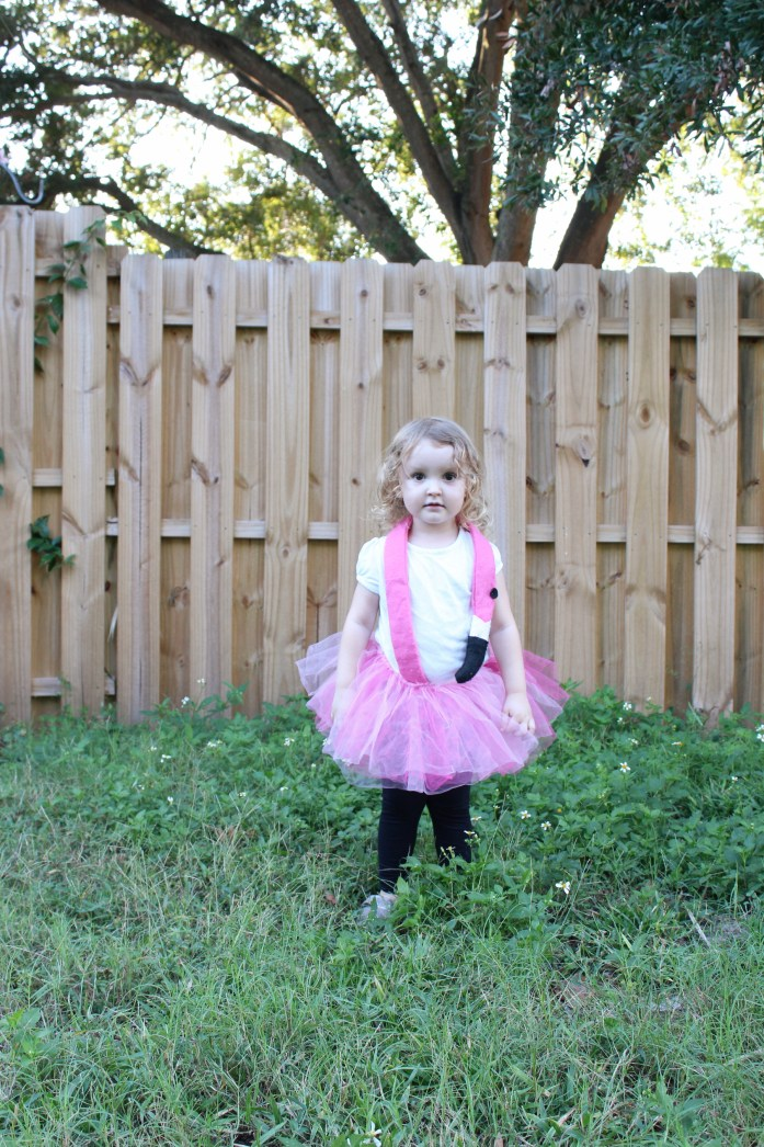flamingo costume, shooting star costume, sailor costume