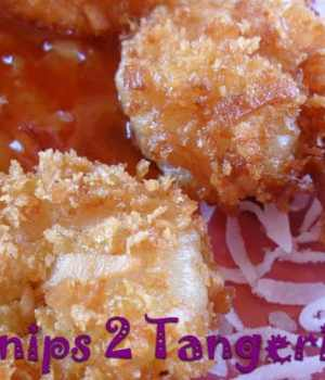 Coconut Shrimp with Spicy Sauce