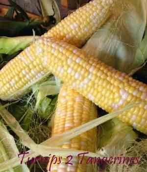Corning Around with Fresh Corn