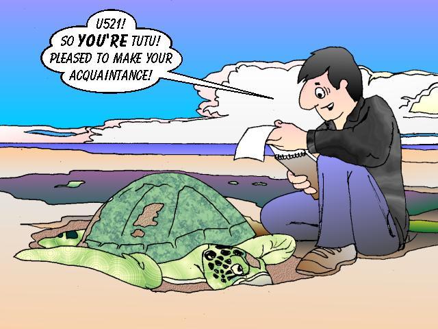 cartoon turtles to draw cartoon