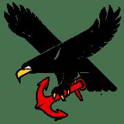 Turun Merikotkat ry logo