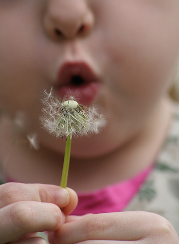 Alergia Bebé
