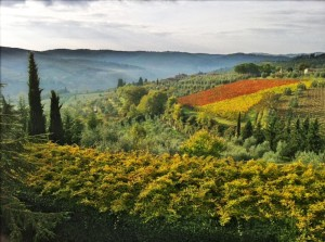 Chianti_hills
