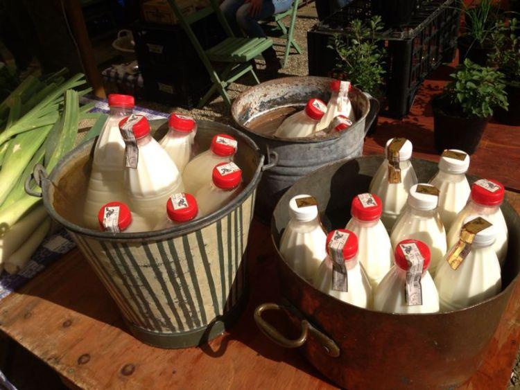 Ad Ortobello si trovano solo prodotti biologici provenienti dal territorio toscano