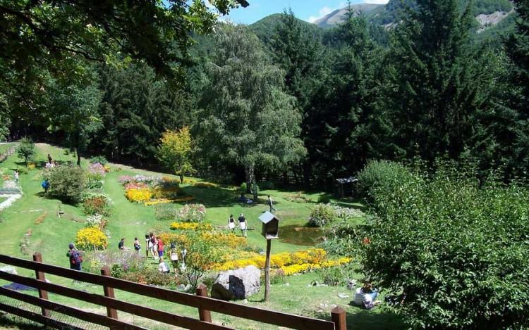Il Giardino di Montagna del Parco dell'Orecchiella in Garfagnana, Toscana