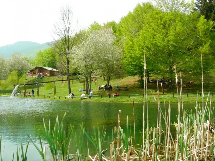 Il Parco dell'Orecchiella si torva in Garfagnana, Toscana