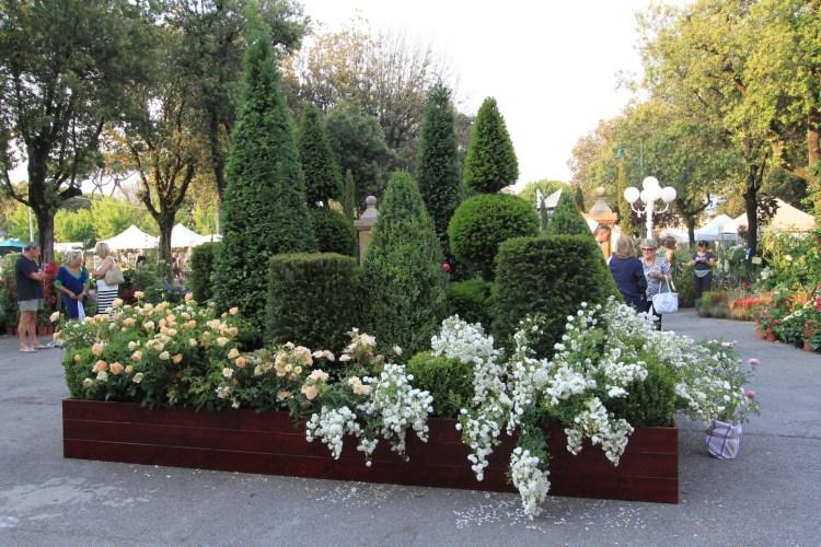 Evergreen Forte: a Forte dei Marmi dal 19 al 21 giugno. La manifestazione dedicata a giardini, arte e Mediterraneo si svolge in Piazza Dante