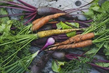 Ogni giorno sentiamo parlare di prodotti bio, dal cibo sulle tavole ai detergenti per la casa. Ma cosa sono davvero? E come si riconoscono?