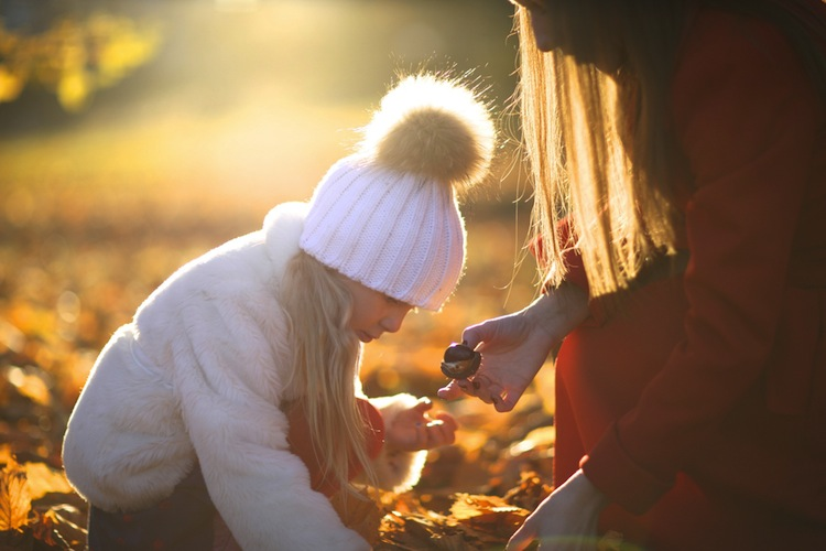 Raccogliere castagne sul Monte Amiata in autunno