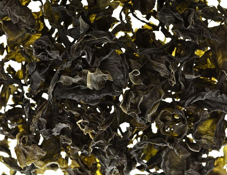 Le alghe alimentari sono un prezioso cibo che da sempre l'uomo utilizza in cucina, grazie al loro apporto nutritivo e vitaminico.