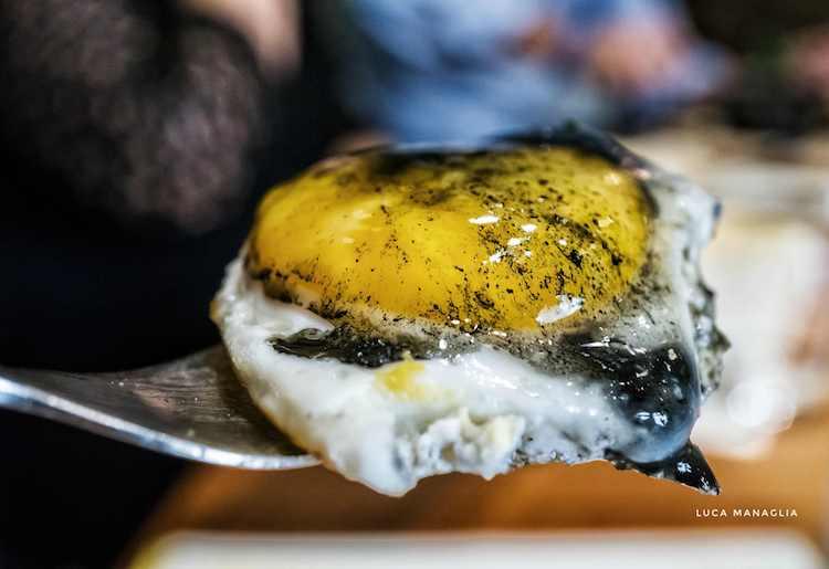 Apre in Toscana il ristorante Nu Ovo. Dopo Roma e Milano il ristorante gourmet con piatti a base di uovo, è in via del Proconsolo a Firenze