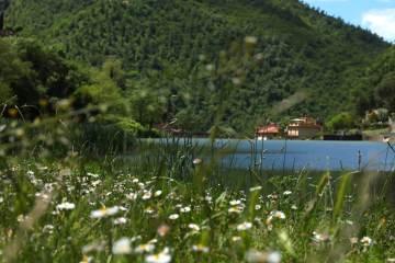 Sei alla ricerca di natural experience in Toscana vicino a Firenze? Qui trovi 8 percorsi per immergersi nella rilassante natura toscana