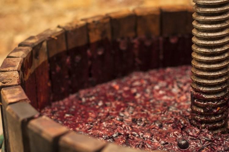 Torchio a vite di legno con mosto di vino