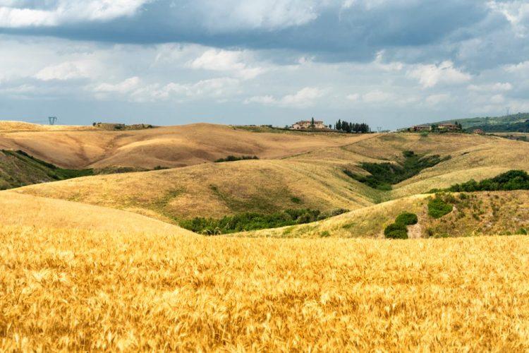 La Volterrana, antica via del sale, tra le più belle strade panoramiche della Toscana, passa nelle campagne di Gambassi Terme.