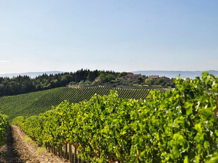 La Tenuta di Poggio Casciano Ruffino è tra i migliori wine resort della Toscana.